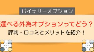 選べる外為オプションの評判・口コミを紹介!