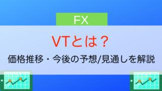 VTとは?
